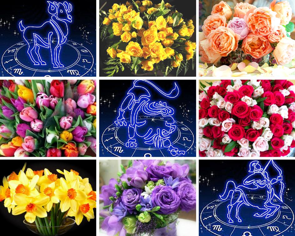 Купить цветы для женщины девы, букет амариллисом флорист