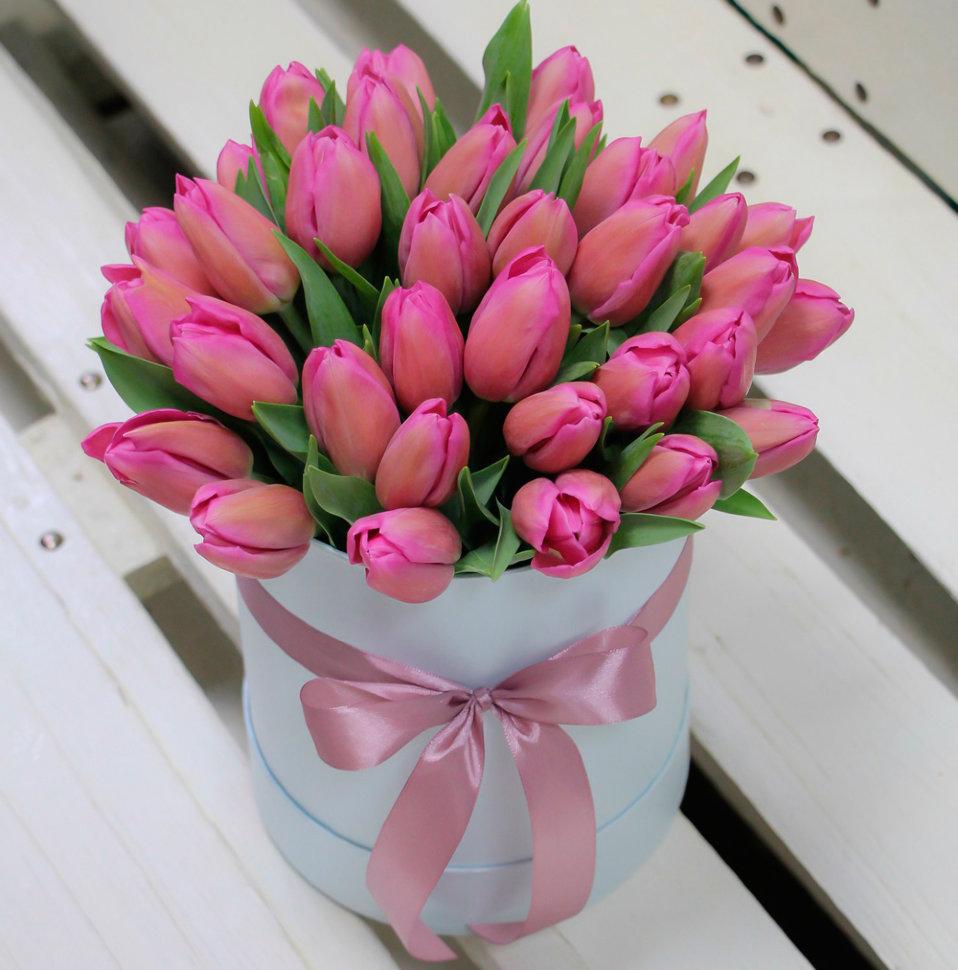 тиканье открытки с тюльпанами с днем рождения стильные считают, что бивень